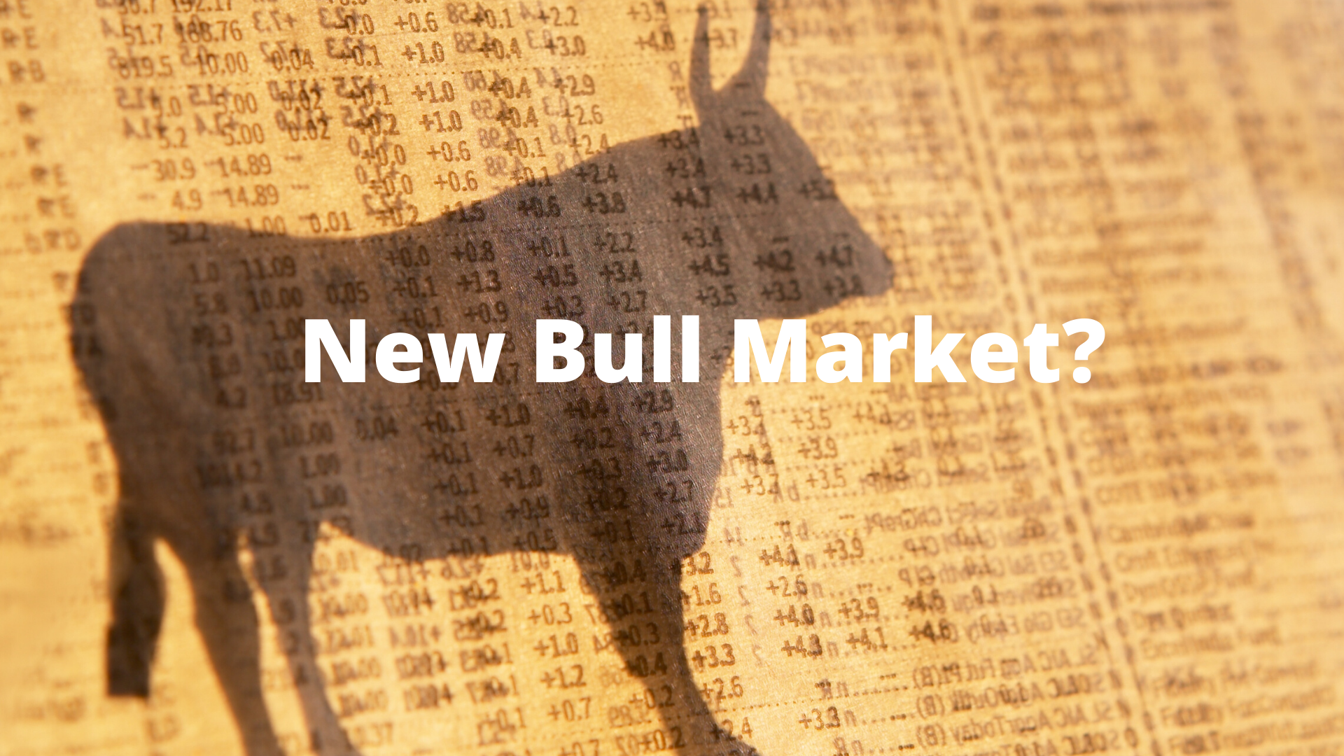 Was 2019 the Start of a New Bull Market?