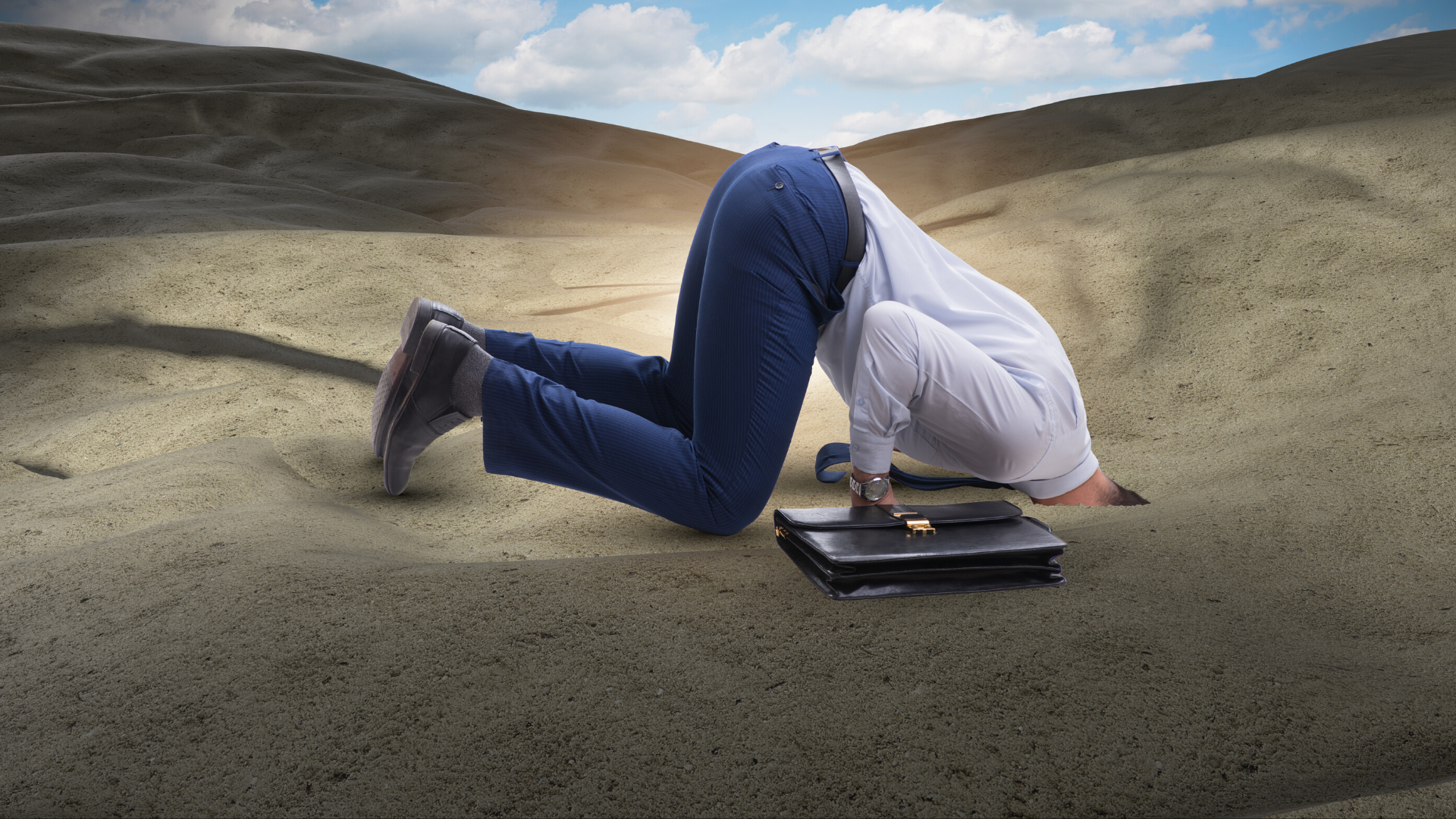 Avoid the ostrich effect and get your head out of the sand when it comes to investing